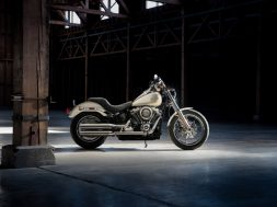 Low Rider familia Softail de Harley Davidson color -Bonneville Salt Pearl-